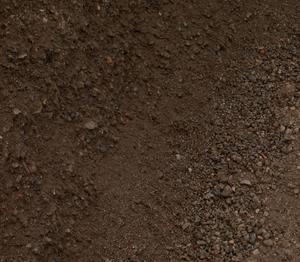 посеять газон на песке