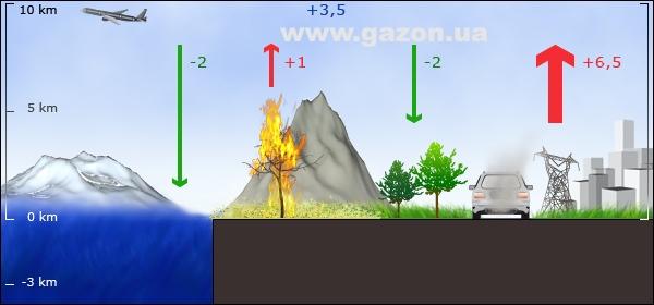 CO2 и роль газона в экосистеме города